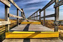 Boardwalk-to-the-ocean