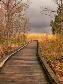 Walkway to Stormy Weather-USA von Nancie Martin DeMellia