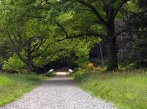 Maudslay-state-park-06-02-09-042