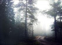 Misty autumn silence III by Susann Johansen