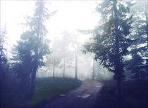 Misty autumn silence II by Susann Johansen