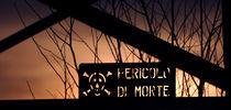 dangerous by emanuele molinari