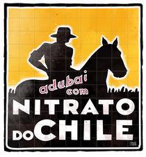 Nitrato do Chile by Filipe Goulão