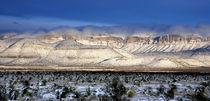 Desert-in-winter-1800