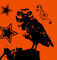 B-owl1