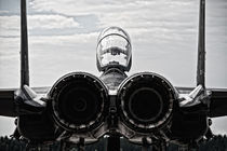McDonnel Douglas F-15 by holka