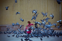 The Girl and the Birds' Take Off von Samar Jha