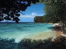 2010-smjacksoncopyright-easy-reef-beach-001