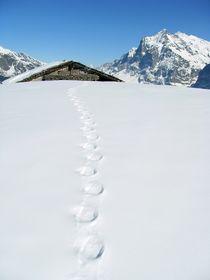 Footprints by Bettina Schnittert