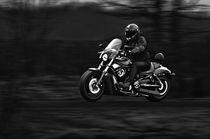Dark Rider von holka