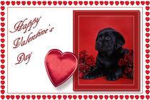 Labrador Valentine card 2 von Waldek Dabrowski