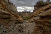 Flash flood canyon by Johan Elzenga