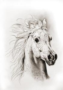 Spirit by art-imago