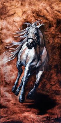 Arabisches Vollblut by art-imago