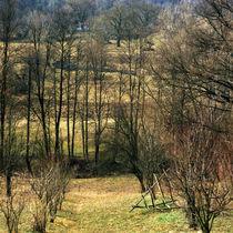 Hills von Razvan Anghelescu