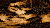 Dunes by Ramzi Salha