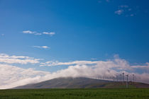 Wind Farm and Wheat by Michael Kloth