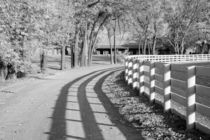 White Plank Fence and Shadows at the Red Mile von Michael Kloth