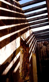 Shadows by Jose Antonio Muñoz Bolívar