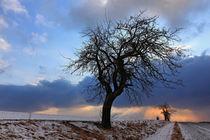 Winterabend von Wolfgang Dufner