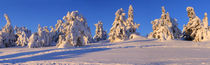 Winterpanorama am Brocken 06 by Karina Baumgart