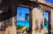 Old Plantation House, Barbados von Melissa Salter