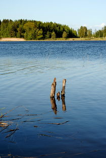 kleiner See by tinadefortunata