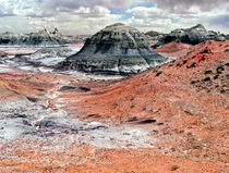 Bisti Wilderness 10 by Luc Novovitch