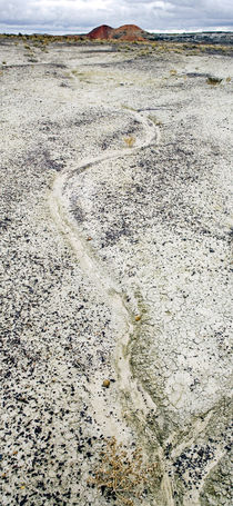 Bisti Wilderness 70 by Luc Novovitch