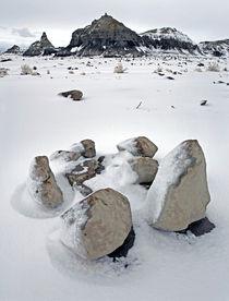 Bisti Wilderness 96 by Luc Novovitch