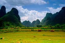 Guilin-yanshou-country-2
