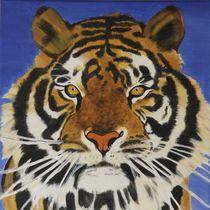 Tiger von Petra Koob