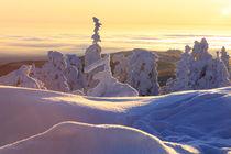 Winterlandschaft am Brocken im Harz 23 by Karina Baumgart