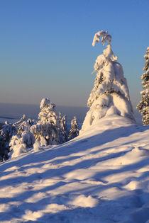 Winterlandschaft am Brocken im Harz 27 by Karina Baumgart