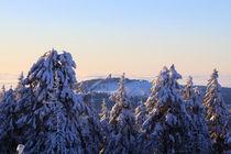 Winterlandschaft am Brocken im Harz 28 by Karina Baumgart