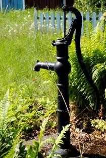Wasserpumpe by tinadefortunata