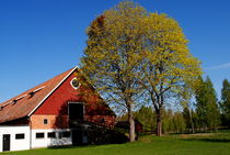 Dorf in Schweden  von tinadefortunata