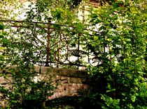 overgrown structure II by Oliver Metz