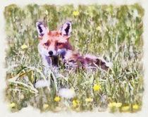 Fox-cub-watercolour
