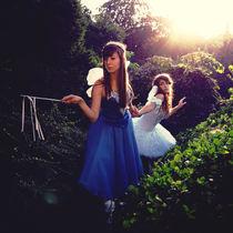 Fairies von Malgorzata Topolska