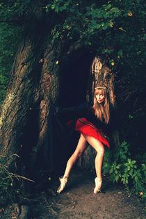 not-so-wicked-fairy von Malgorzata Topolska