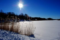 Sonne am See by tinadefortunata
