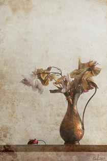 C-ral-raffaellalunelli-fiori-2oldroses