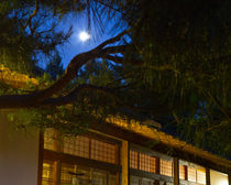Moon over the Pavilion at twilight  by Chris Bidleman