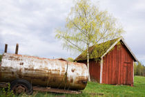Rusty old tank and small birch tree in spring by kbhsphoto