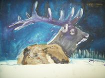 Elk-and-friends-001