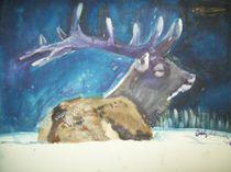 Elk by cindy-cindyloo