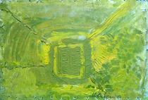 Garden labyrinth  by Doina Cristian
