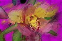 Rainbow Orchid Painting  von Don  Wright