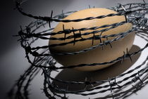 Ostrich egg surrounded by barbed wire von Sami Sarkis Photography